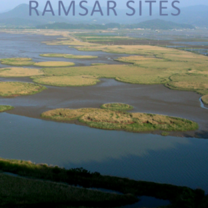 The Designation and Management of Ramsar Sites