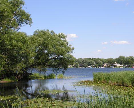 Inland Wetlands